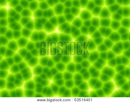 Green plant cells abstract background