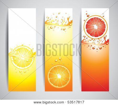 Juicy Citrus Splashes Banners, Vector