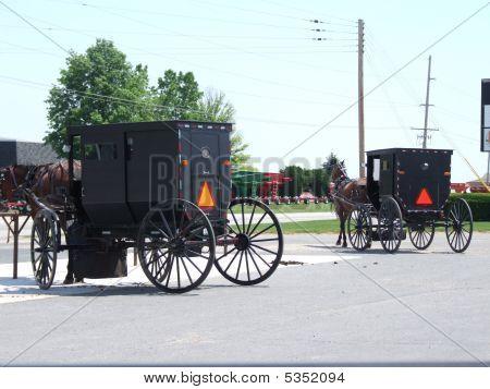 Amish Buggys