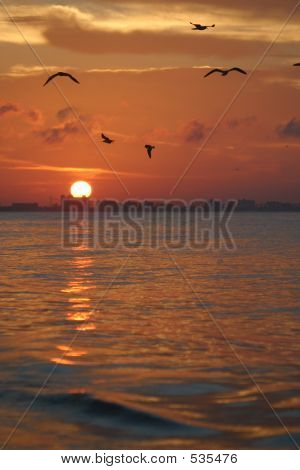 Sunrise Over Fort Myers