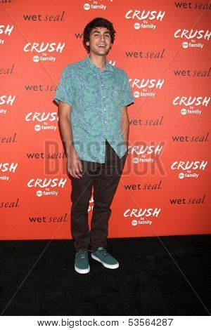 LOS ANGELES - NOV 6:  Ashton Moio at the CRUSH by ABC Family Clothing Line Launch at London Hotel on November 6, 2013 in West Hollywood, CA