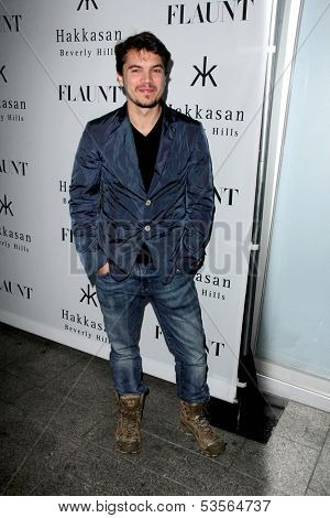 LOS ANGELES - NOV 7:  Emile Hirsch at the Flaunt Magazine November Issue Party at Hakkasan on November 7, 2013 in Beverly Hills, CA\