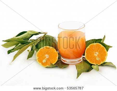 green mandarines miyagawa and sweet orange juice