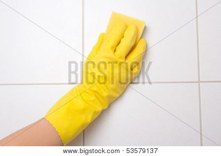 Hand In Glove Cleaning Tile Wall
