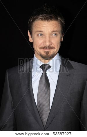 LOS ANGELES - NOV 7:  Jeremy Renner at the Ermenegildo Zegna Global Store Opening at Ermenegildo Zegna Boutique on November 7, 2013 in Beverly Hills, CA