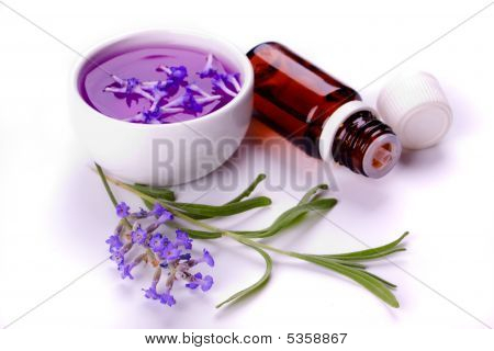 Lavender Products