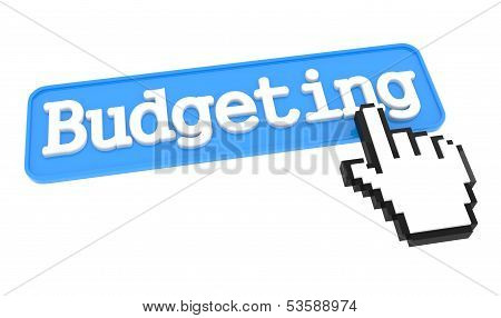 Budgeting Button with Hand Cursor.