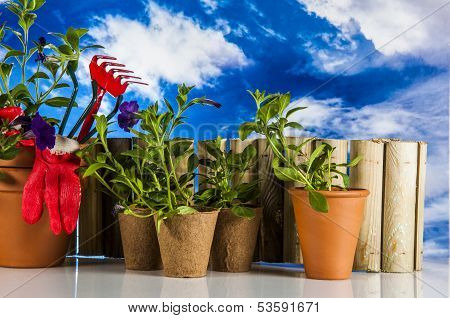Beautiful spring composition, gardening stuff