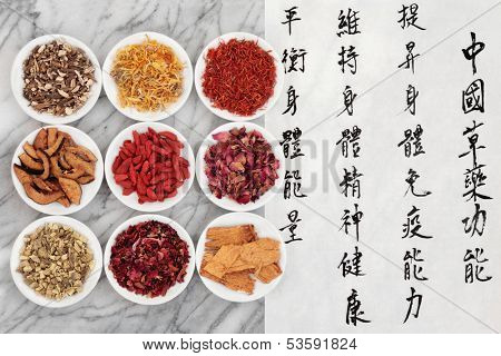 Traditional chinese herbal medicine with mandarin script calligraphy.  Translation describes the functions to increase the bodys ability to maintain body and spirit health and to balance energy.