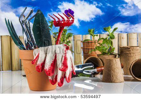 Light garden composition with gardening equipment
