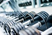 stock photo of barbell  - Sports dumbbells in modern sports club - JPG