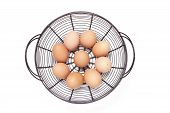 stock photo of chicken-wire  - Free range eggs in wire basket with white background - JPG