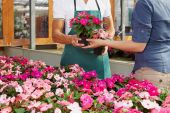 image of flower shop  - cropped view of woman shopping in flower shop - JPG
