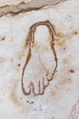 picture of brothel  - Footprint on Marble for advertisement of the Brothel in Ephesus Turkey