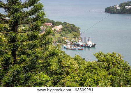 Evergreens On Hill With Freighters In Background