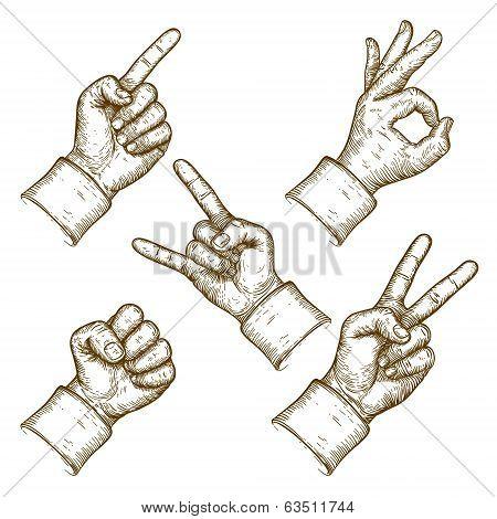Engraving Vector Illustration Of Five Hands