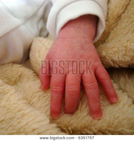 Babies Hand