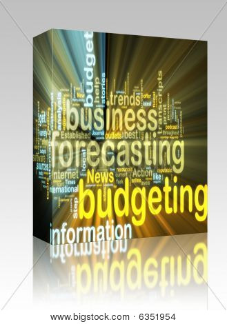Budgeting Wordcloud Glowing Box Package