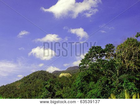 Mountain landscape in a sunny day