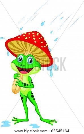Cute frog cartoon wearing rain gear under mushroom