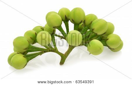 Pea Eggplants on white background