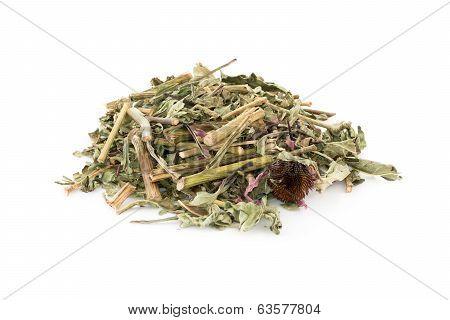 Dried Echinacea Purpurea
