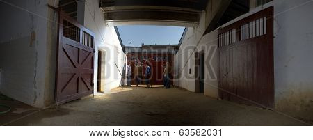 Horses Doors