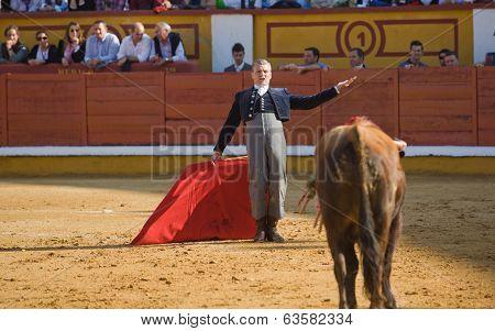 Calling The Bull