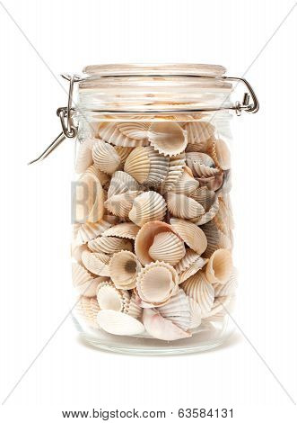Seashells in glass bottle