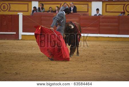 Spanish Torero Miguel Angel Perera