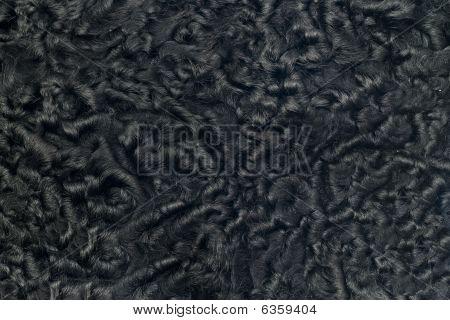 Closeup Of Black Sheepskin Fur
