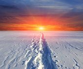 Scene with trail on snow on sunset background