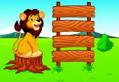 picture of mountain lion  - Vector illustration of Cute lion cartoon in the savannah - JPG