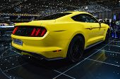 stock photo of mustang  - GENEVA - JPG