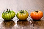 stock photo of crudites  - Green and red tomatoes on a wooden table with water drops - JPG