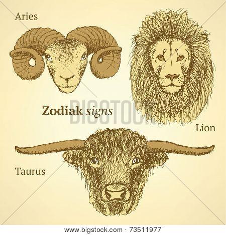 Sketch Zodiac Signs