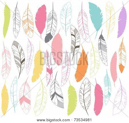 Vector Set of Stylized or Abstract Feathers and Feather Silhouettes