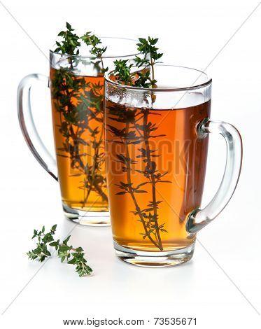 Tea Thymus On White Background
