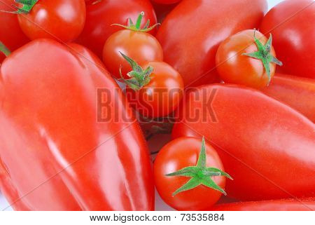 close up of the various  tomato macro