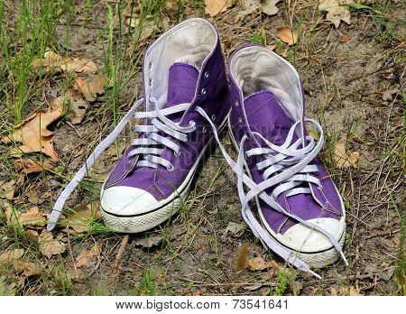 pair of gymshoes on soil in forest