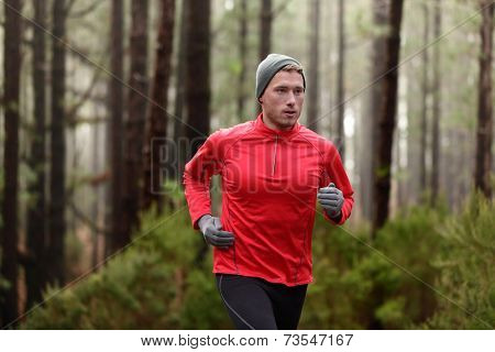 Running man in forest woods training and exercising for trail run marathon endurance race. Fitness healthy lifestyle concept with male athlete trail runner.