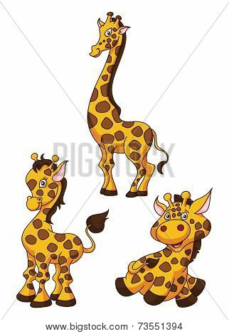 Girafe Cartoon Funny Illustration