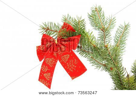 Red christmas ribbon on a tree