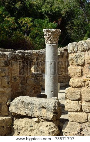 Antique Column In Agrippa Palace, Israel