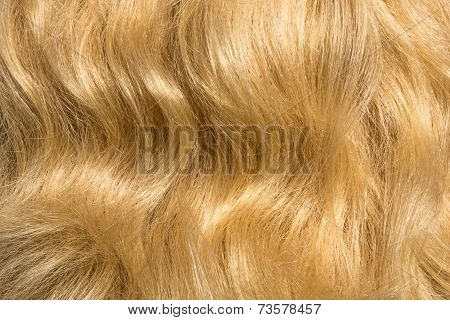 The texture of women's hair.