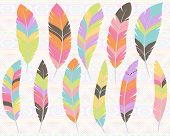 stock photo of feathers  - Vector Collection of Stylized Feathers with Tribal patterned background - JPG