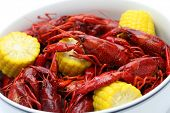 pic of crawfish  - boiled crawfish clayfish party - JPG