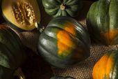 pic of acorn  - Raw Organic Green and Orange Acorn Squash  - JPG