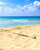 image of playa del carmen  - Caribbean sea scenery in Playacar ( Playa Del Carmen ) Mexico ** Note: Shallow depth of field - JPG