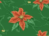 picture of poinsettia  - Seamless Background Featuring Poinsettia Patterns - JPG